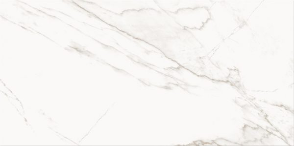 PS804 WHITE GLOSSY 298X598 A 72DPI