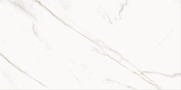 PS804 WHITE GLOSSY 298X598 E 72DPI